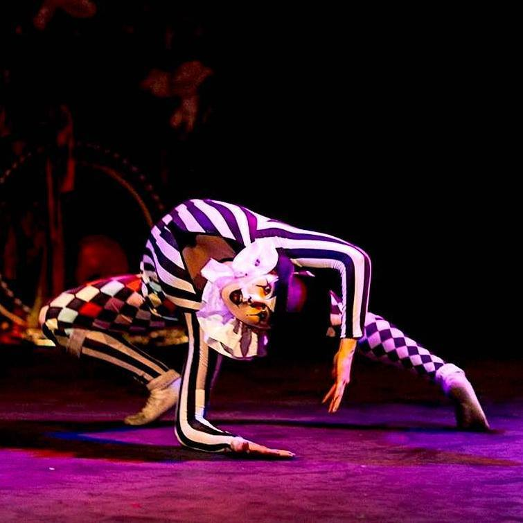Circus Acts & Performers for Hire